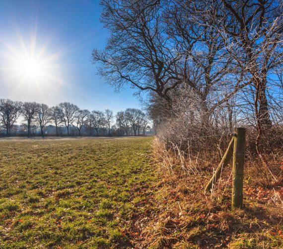 countryside-winter-sunrise-PF85NTV